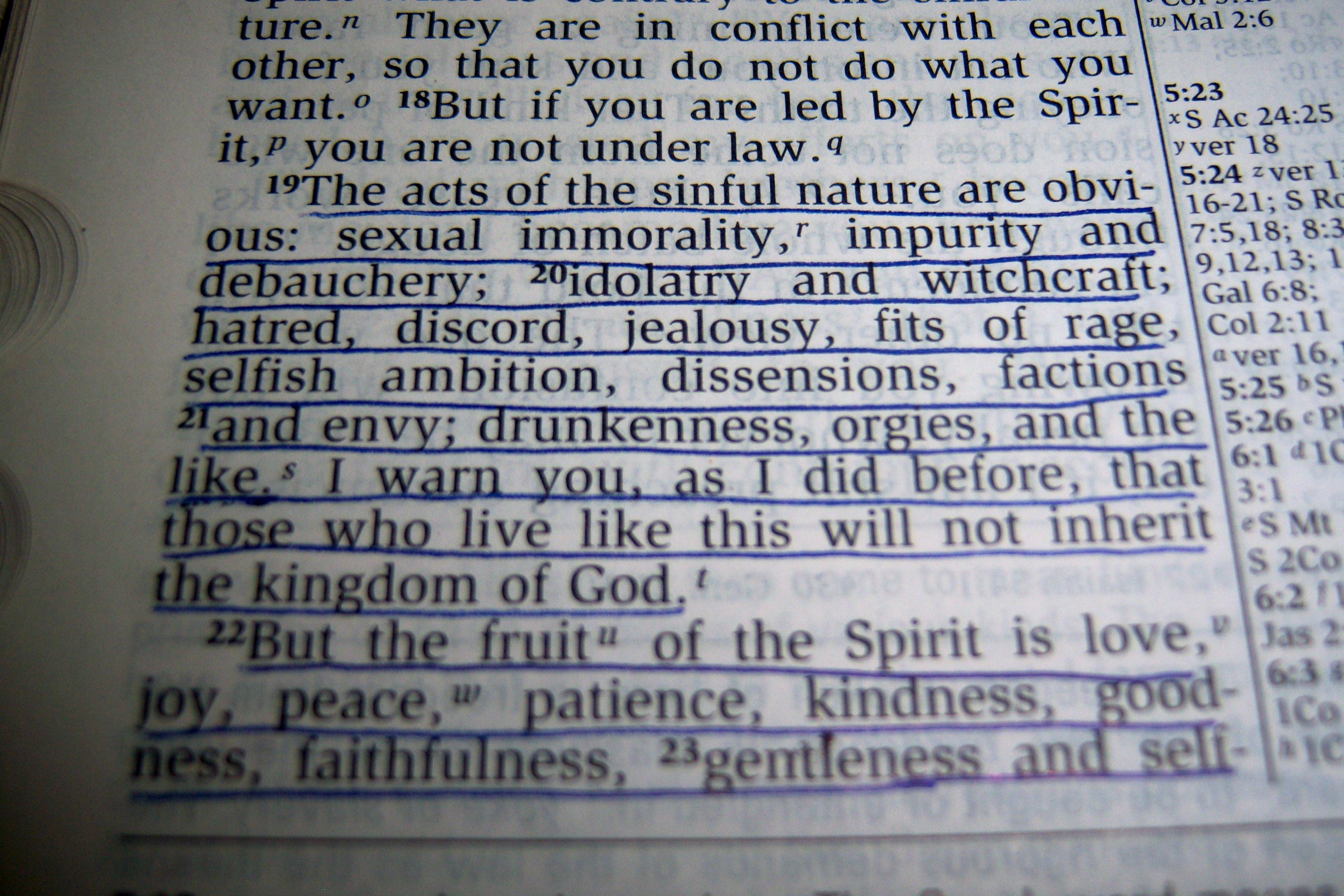 Praying Scripture: Galatians (Ch  5) | Heart Treasures